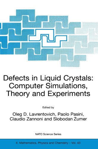 defects-in-liquid-crystals-computer-simulations-theory-and-experiments