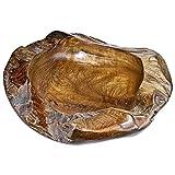Guscio Teak legno L 40–50cm