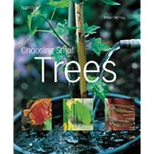 Choosing a Small Tree