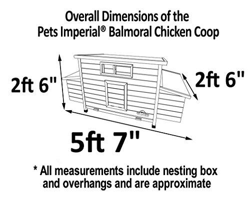 Pets Imperial® - Balmoral Double Grand Poulailler Pouvant Accueillir Jusqu'à 10 Oiseaux - 5