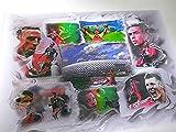 ALLIANZ-ARENA und diverse FC Bayern-Stars als Kunstdruck -direkt vom Künstler 30cm x 42cm