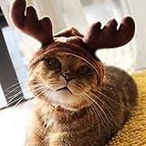 Cvxgdsfg Weihnachtskostüm-Haustier-Katzen-Hündchen-Geweih-Kappen-Hut-Haustier-Kleidung