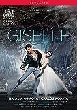 Adam: Giselle [Natalia Osipova, Carlos Acosta] [DVD] [2014] [NTSC]