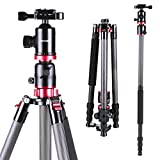 K&F Concept Carbon Fiber Travel Tripod with Built-in Monopod + Transverse Center Column + 360 Degree Ball Head + 5 Sections + 8KG Load Capacity with 1/4