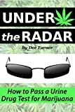 Best Drug Detoxes - Under the Radar: How to Pass a Drug Review