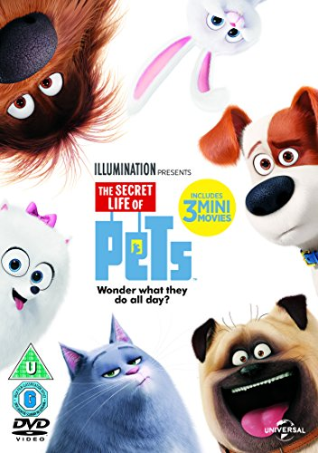 The Secret Life Of Pets (DVD + Digital Download) [2015]