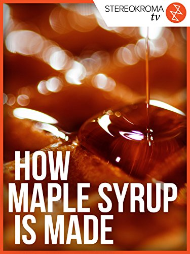 How Maple Syrup is Made [OV] (Gold Tree Garland)