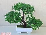 LOF-fei Künstliche Pflanzen Topfpflanzen Dekoration Büro Esstisch Zubehör,Grünes Quadrat Keramik Blumentöpfe