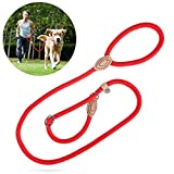 UEETEK 1.2 formazione scivolo in CM cane guinzaglio collare Nylon piombo per gli animali domestici (rosso) di formazione