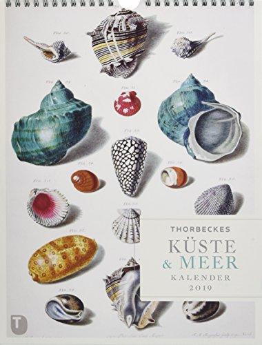 Thorbeckes Küste und Meer Kalender 2019