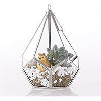 Artistico Moderno lacrime forma diamante 3mm di spessore vetro trasparente geometrico poliedro terrario Hanging Air (Bookshelf Stand)