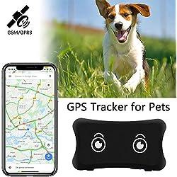 Traceur GPS Etanche pour Chiens et Chats, Collier de Fixation pour iOS/Android