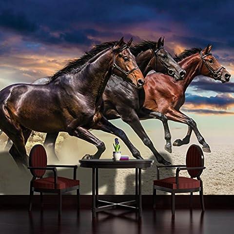 3 Galloping Horses Wallpaper Mural