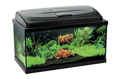 Aquael Aquarium Set LEDDY LED 100, 200 Liter komplett Aquarium mit moderner LED Technik von Aquael