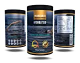 Fish Collagens - Best Reviews Guide