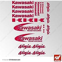 Stickers KAWASAKI RACING TEAM NINJA-Rojo-Tabla de 20 unidades, adhesivos, autoadhesivos, Z750 y Z1000, ZXR, zx6r, zx12r, zx9r, zx7r z800