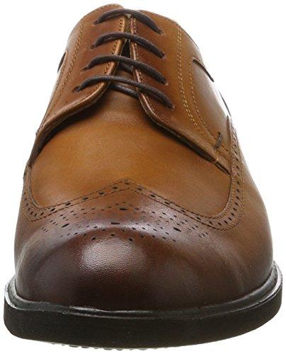 Tamboga Men 5604 Derbys Brown (cognac)