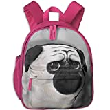 Lovely Schoolbag French Bulldog Double Zipper Closure Waterproof Children Schoolbag Backpacks with Front Pockets for Teens Boys Girl
