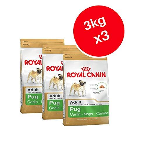 Royal Canin Mops Adult Trockenfutter für Hunde 3kg (3Stück) - Gluten-freie Öle