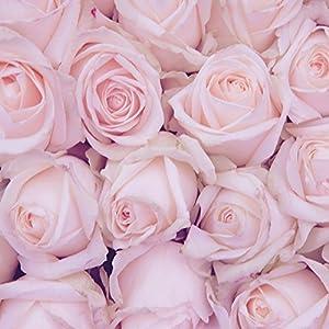 Nintendo DS Case Skin Sticker aus Vinyl-Folie Aufkleber Rosen Blumen Valentinstag