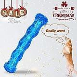 ZNOKA TPR Quietschen Kauspielzeug für Hunde Bite Robust Gummi ungiftig Zahn Reinigung Spielzeug groß, blau