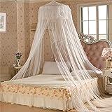 Elegantes Prinzessin-Netz, Bettnetz mit Baldachin, hängendes Moskitonetz mit Kuppel für den Sommer für Zuhause und die Reise., weiß, Einheitsgröße