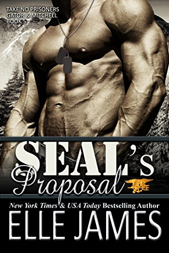 SEAL's Proposal (Take No Prisoners Book 5)