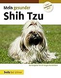 Mein gesunder Shih Tzu