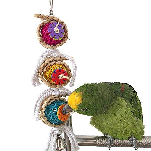 Natur Sepak Takraw Funny Pet Bird Papagei Sittich Bite Kauspielzeug Pet Aras African Greys Wellensittiche Funny Swing Glocken Spielzeug