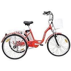 """Jorvik 24"""" Eléctrico Triciclo 36V 250 w- ADULTOS E Trike - Disponible en varios colores - Rojo"""