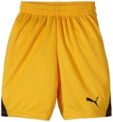 PUMA Kinder Hose Shorts without Inner Slip, Team Yellow/Black, 128, 701275 07 (Shorts Gelb Mädchen)