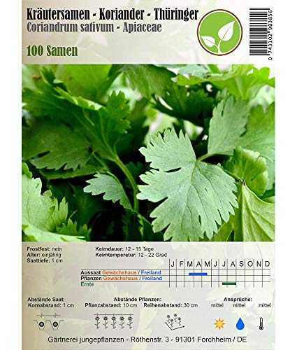 Kräutersamen - Koriander/Coriandrum sativum - verschiedene Sorten(Thüringer/Coriandrum sativum)