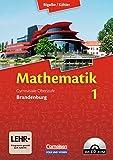 Bigalke/Köhler: Mathematik Sekundarstufe II - Brandenburg - Neubearbeitung: Band 1 - Schülerbuch mit CD-ROM - Dr. Anton Bigalke, Dr. Norbert Köhler, Dr. Horst Kuschnerow, Dr. Gabriele Ledworuski