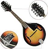 Steinbach bluegrass mandoline avec plafond de chaux