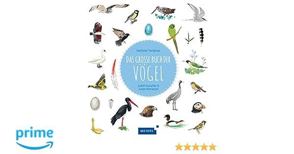 Das große Buch der Vögel: Amazon.de: Nathalie Tordjman, Judith ...