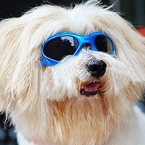 blyax (TM) Fashion Pet Hund Brillen UV-Schutz Sonnenbrillen Eye tragen Faltbare Hundebox Zubehör