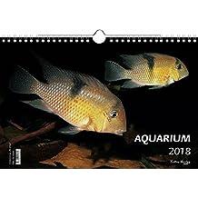 Kalender Aquarium 2018 - Großformat 29,7 x 42 cm (A3) - 12 Fotografien einer einmaligen Unterwasserlandschaft und von ihren Bewohnern - 1 Titelbild mit edlem separatem Folienblatt