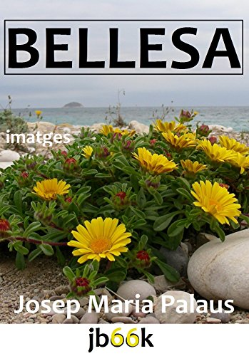 Descargar Libro BELLESA (Catalan Edition) de JOSEP MARIA PALAUS PLANES