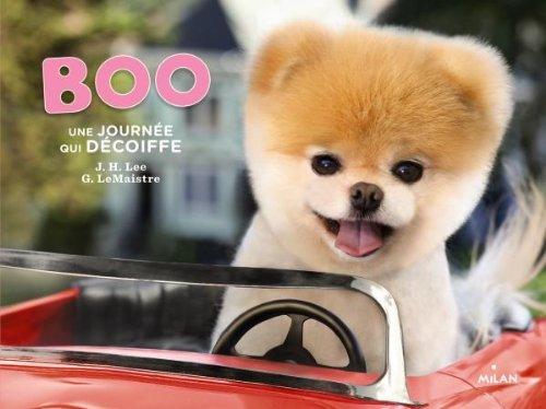 Boo, une journée qui décoiffe