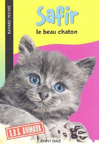 Safir : Le beau chaton