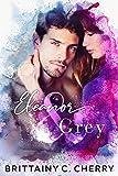 Eleanor & Grey (English Edition)