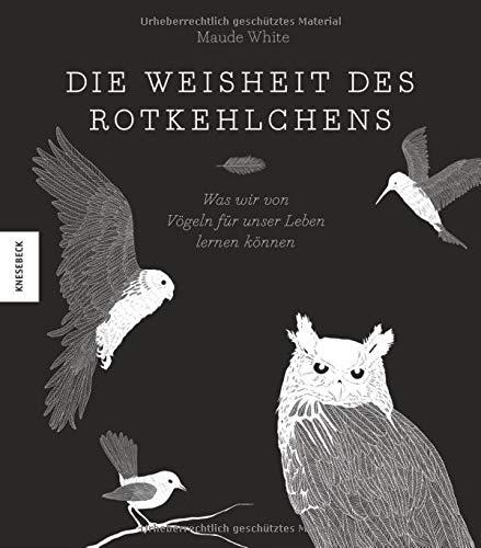 Die Weisheit des Rotkehlchens: Was wir von Vögeln für unser Leben lernen können -
