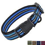 Mile High Life Night Reflektierende Doppelstreifen Nylon Hundehalsband (Blau, Kleiner Hals 30.5cm - 43cm - 9KG)