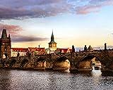 OKOUNOKO Digitales Malen Nach Zahlen Für Erwachsene ,Prag Brücke Landschaft, Leinwand Färbung...