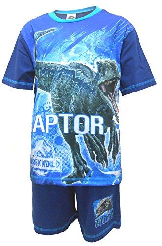 Jurassic World Jungen Schlafanzug Offiziell Raubvogel Dinosaurier kurze Pyjama Größen von 4 bis 10 Jahren - Blau, 5-6 Years (Pyjama-böden Jungen)
