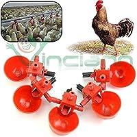 Kit de 5bebederos para cría de aves, pollos o gallinas