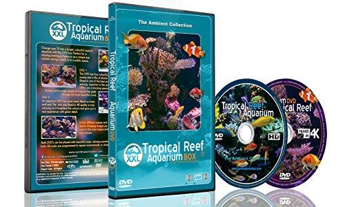 Aquarium DVD - 2 DVD Set Tropisches Riff Aquarium XXL Box mit natürlichen Klängen und entspannender Musik