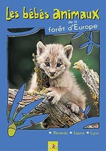 Les Bébés animaux des forêts d'Europe