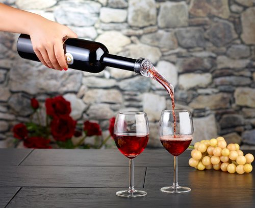 Rosenstein-Shne-Weinausgieer-Weindekantierer-mit-Ausgiehilfe-Dekanter