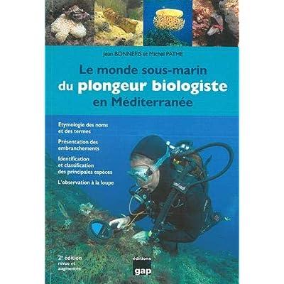 Le monde sous marin du plongeur biologiste en Méditérrannée